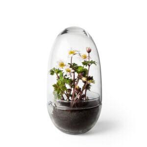 Design House Stockholm - Grow Gewächshaus