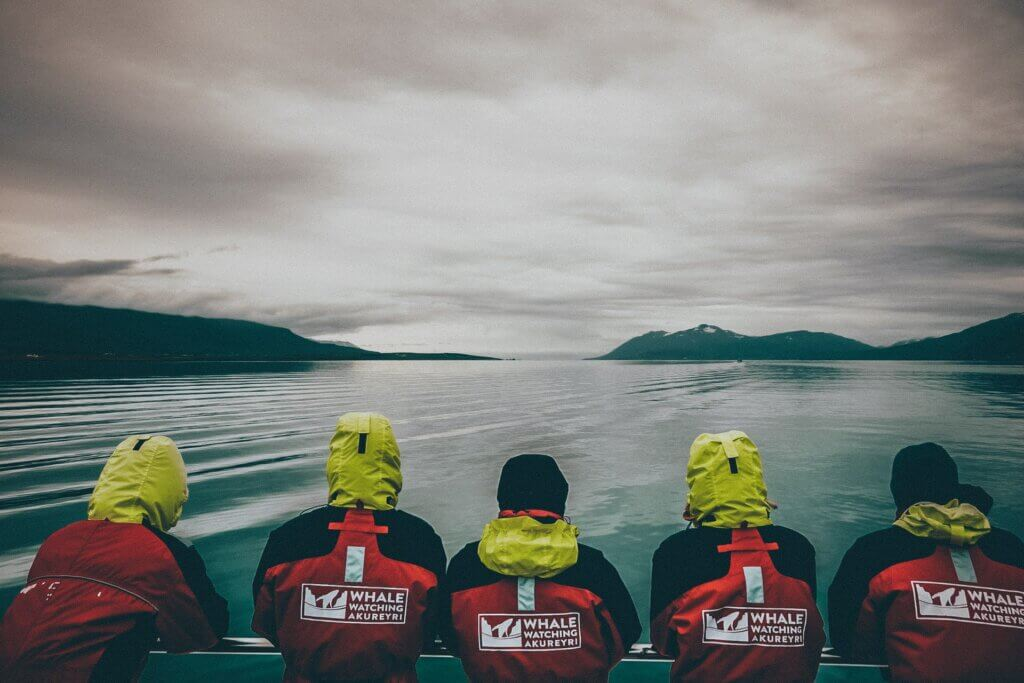 Akureyri: Sehenswürdigkeiten, Whale Watching