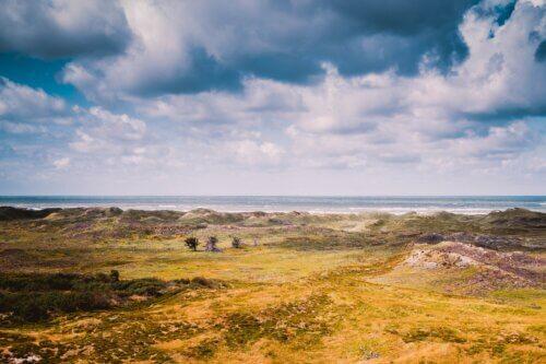 Henne Strand: Gemütlicher Strandurlaub an Dänemarks Westküste
