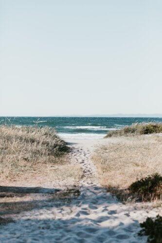 Hvide Sande: Wandern und Radfahren