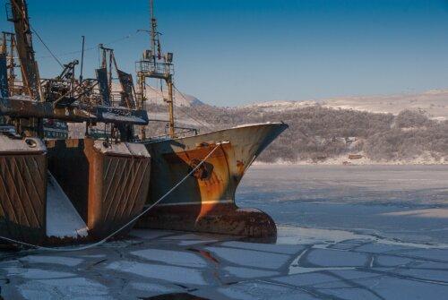 Kirkenes: Urlaub