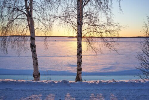 Luleå: Urlaub