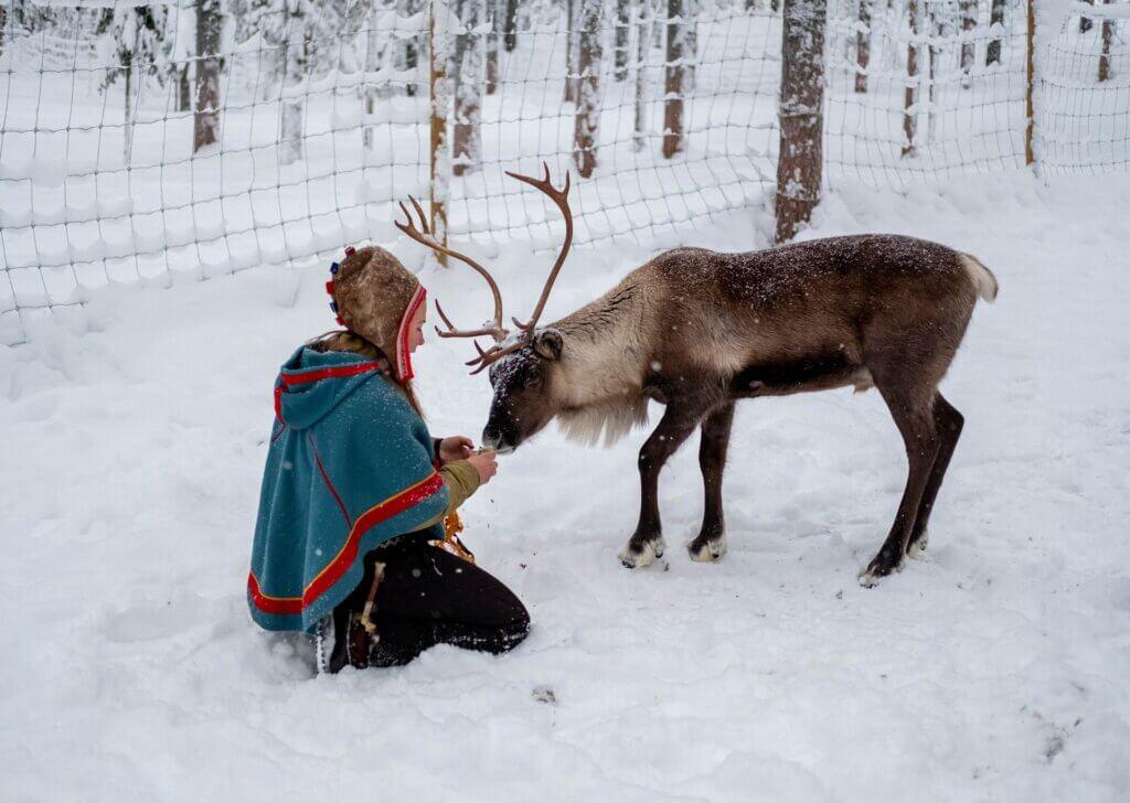 Schwedisch Lappland Samen Rentier