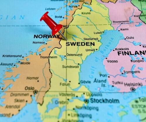 Die schwedische Sprache