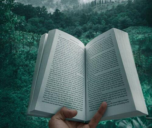 Skandinavische Krimis – Spannende Bücher, Filme und Serien
