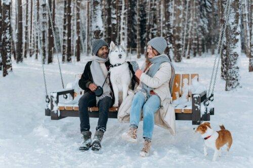 Skandinavische Winterjacken – Warm durch den Winter