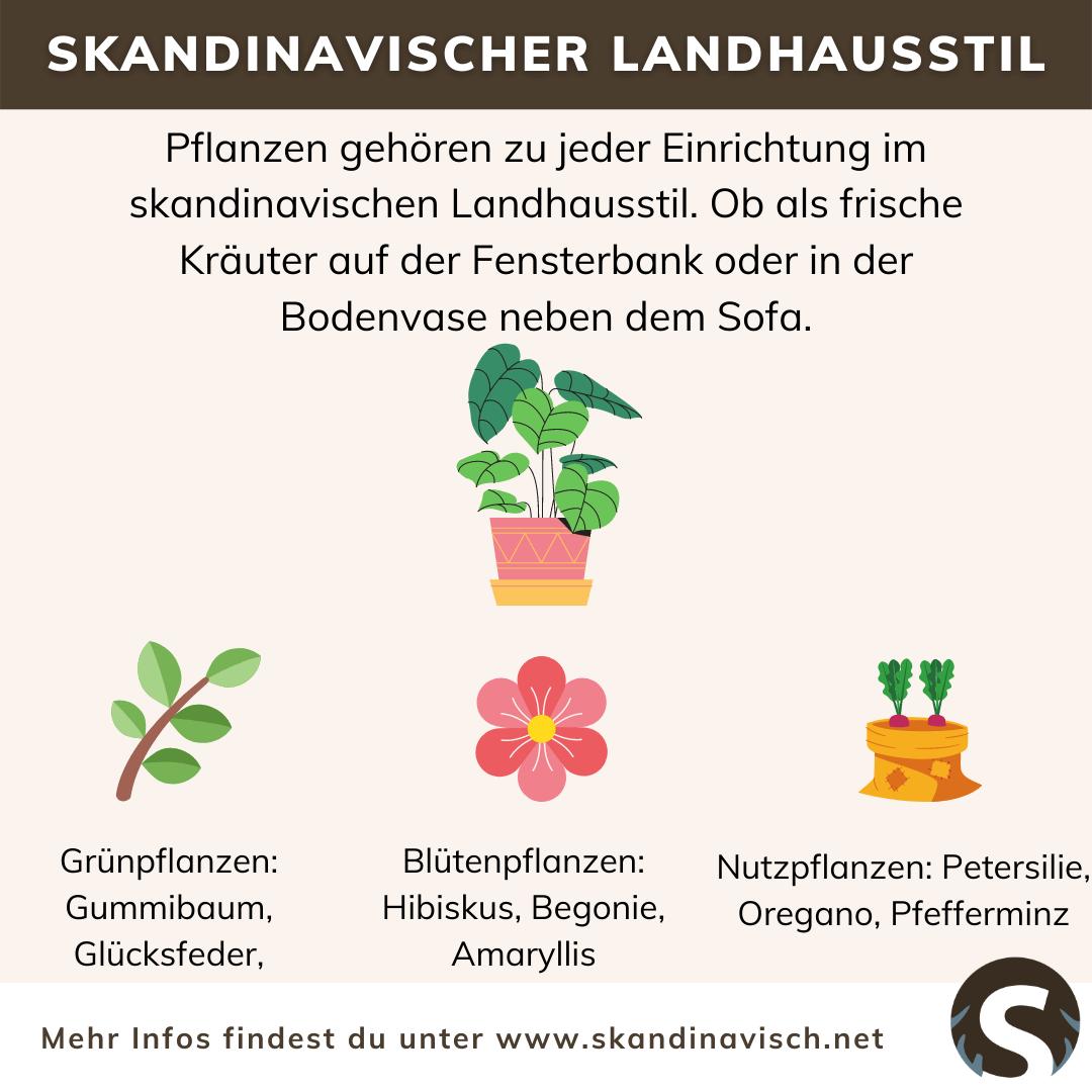 Skandinavischer Landhausstil Pflanzen