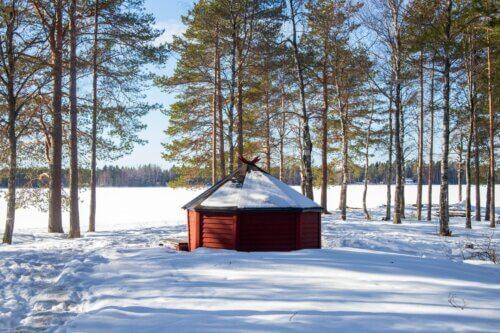 Umeå: Besuche die größte Stadt Norrlands