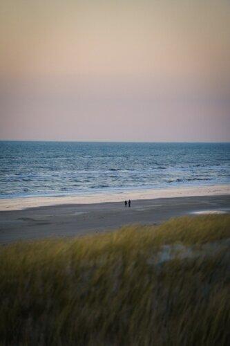 Vejers Strand: Aktivitäten